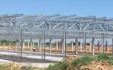 Animal Farm Project WEC Myanmar 1
